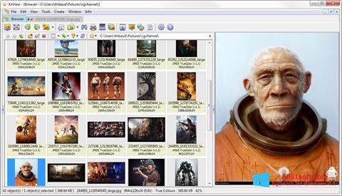 Ekrano kopija XnView Windows 8.1